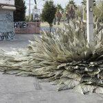 Loose-Leaf-Studio-l'installazione-botanica-in-un-ex-stazione-di-servizio-Collater.al_
