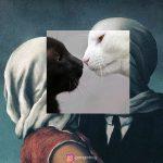 Gangirboy | Collater.al