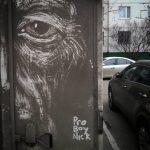ProBoyNick-l'artista-russo-che-disegna-sulle-auto-sporche-Collateral-5