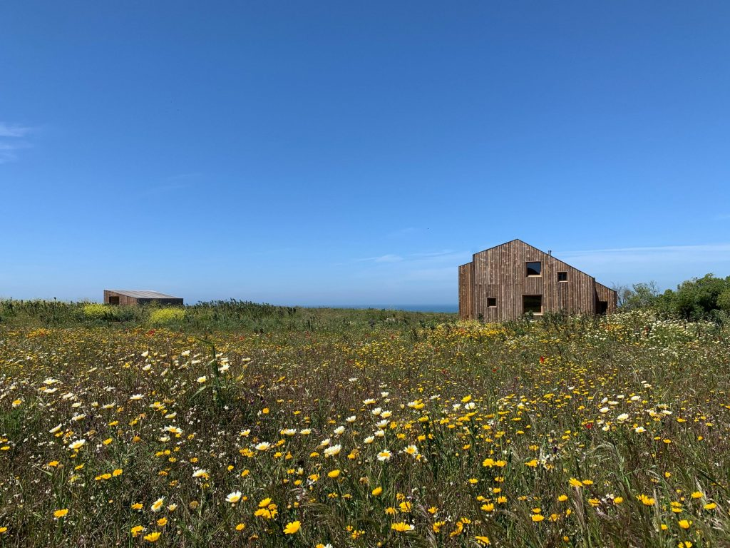 Studio Combo, the eco-friendly hotel with two abandoned houses | Collater.al