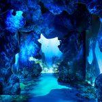 Arcadia Earth | Collater.al 6