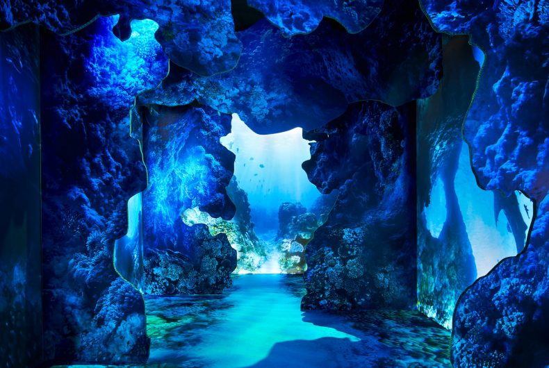 Arcadia Earth, the installation that recreates the underwater world with plastic