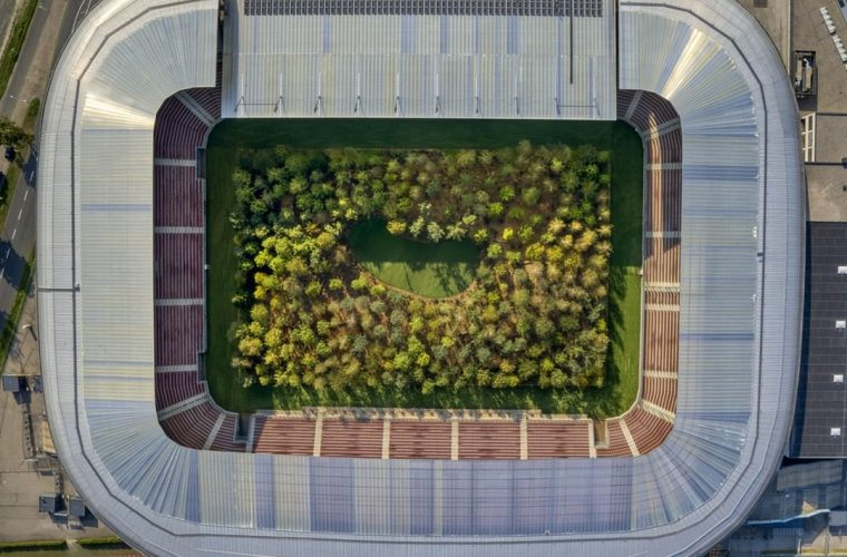 FOREST – The Unending Attraction of Nature, the installation that transforms a stadium into a forest