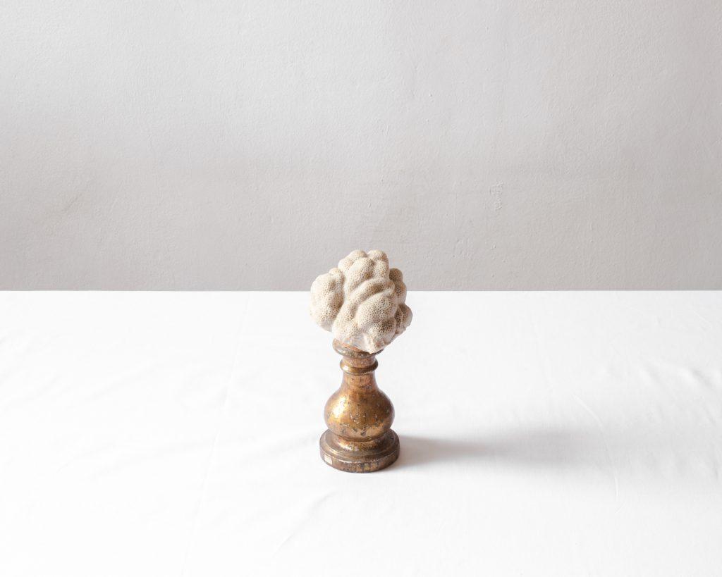 Jacopo Valentini Creators | Collter.al