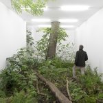 fabian knecht isolation | Collater.al 7