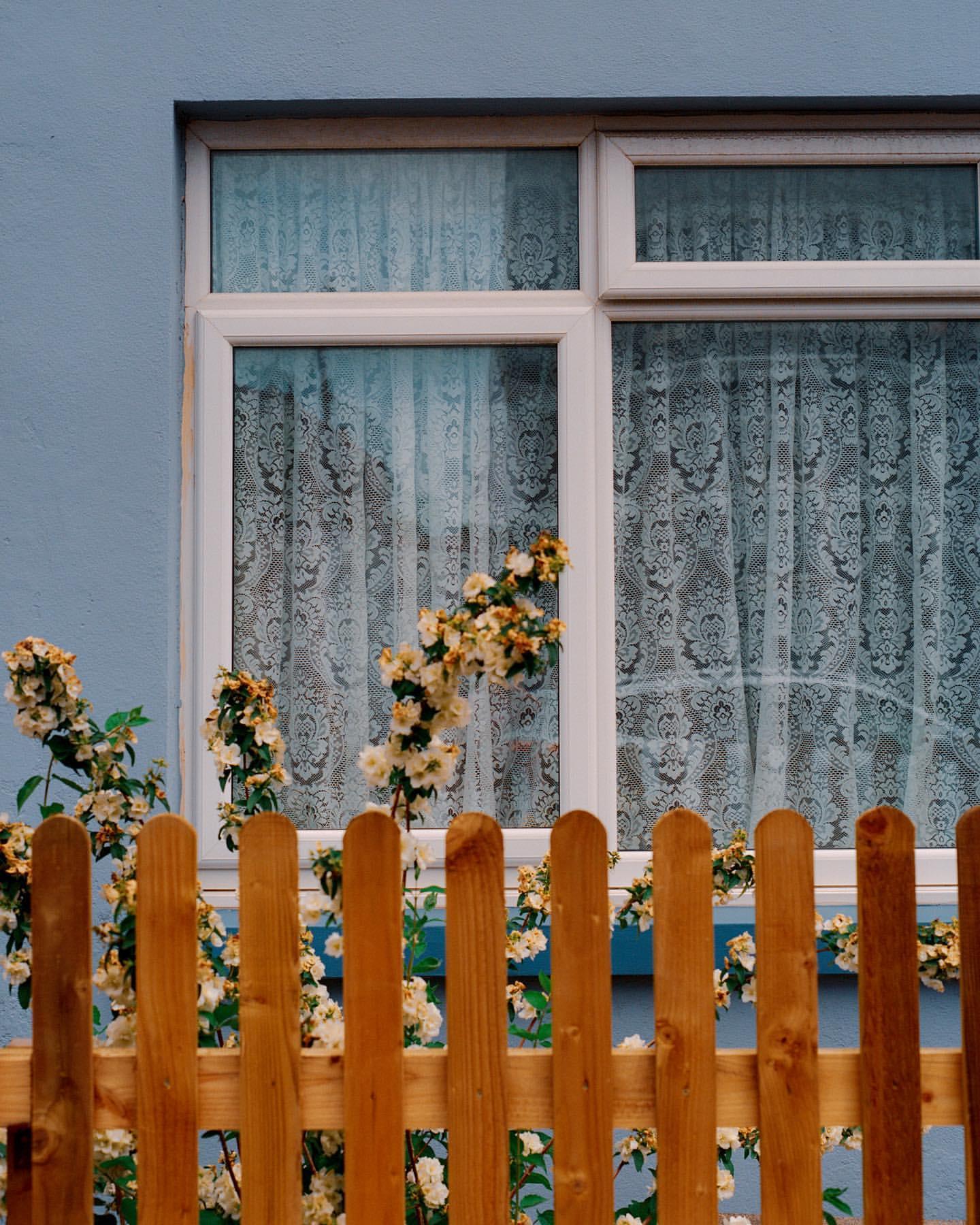 Great British Windows, Teddy Fitzhugh's photographic project
