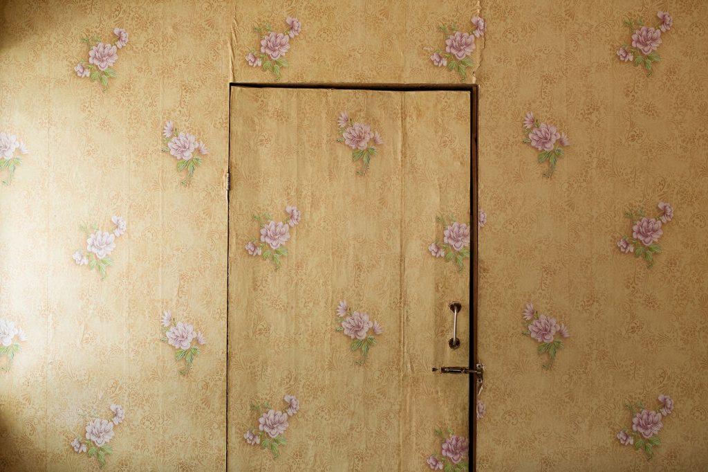 Daria Garnik | Collater.al 6