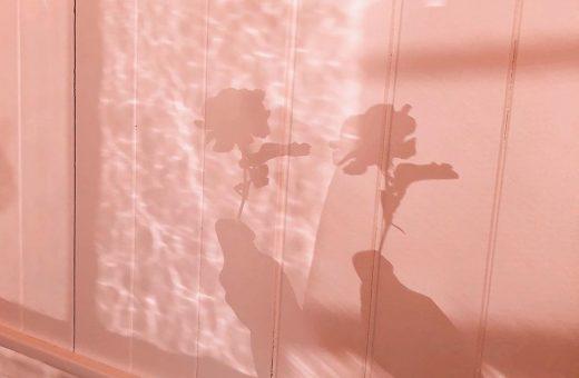 L'immaginario eclettico della fotografa Pia Riverola