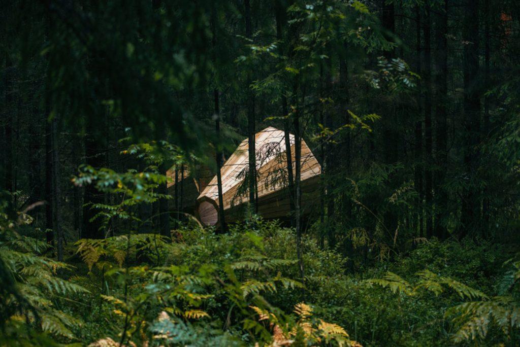 Megafoni di legno | Collater.al 2