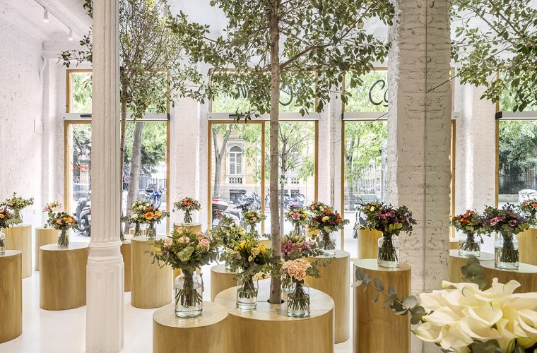 Colvin, uno dei negozi di fiori più belli in cui potete andare
