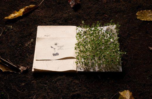 The Boy Who Could Not Wait, il libro eco-friendly vietnamita