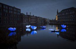 Le spettacolari immagini dell'Amsterdam Light Festival 2019-20