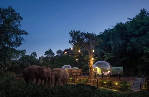 Jungle Bubbles, living in a bubble among the elephants