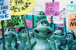 Turtle Journey, the critical sea turtle situation