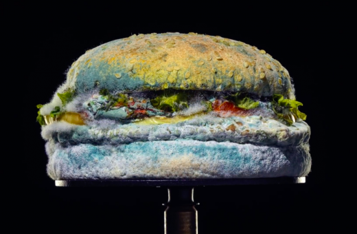 The Moldy Whopper, Burger King is betting on mold