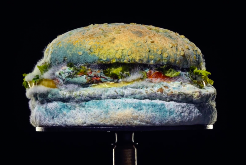 The Moldy Whopper, Burger King punta sulla muffa