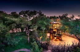 nGala Treehouse, un soggiorno da sogno in Sud Africa