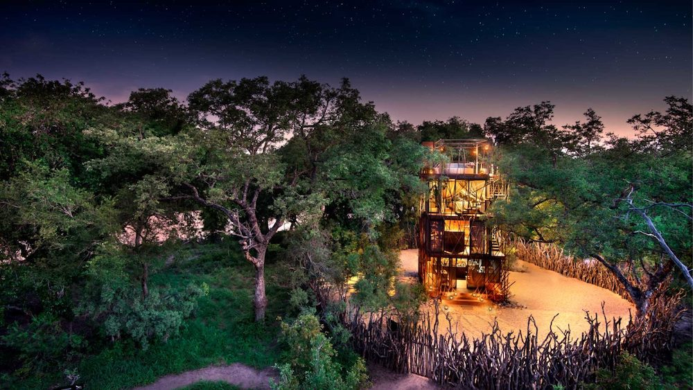 nGala Treehouse, a dream stay in South Africa | Collater.al