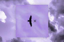 """Dieci domande sotto """"Un altro cielo"""" a Irbis 37"""
