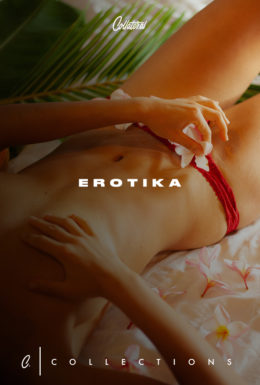 Erotika Collection