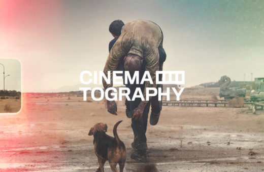 Cinematography – Dogman