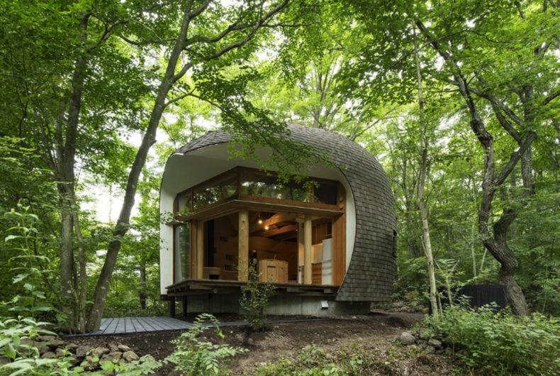 Shell House, una casa-conchiglia persa nella foresta