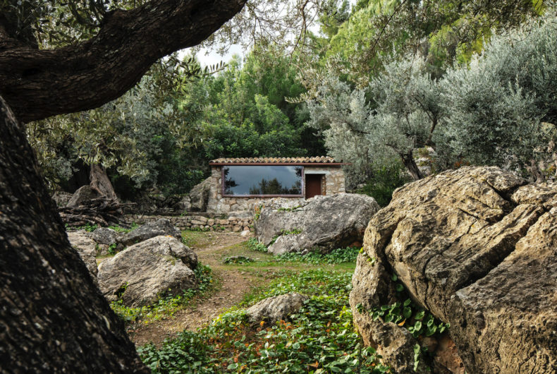 The Olive Houses, due case colorate nascoste tra gli ulivi