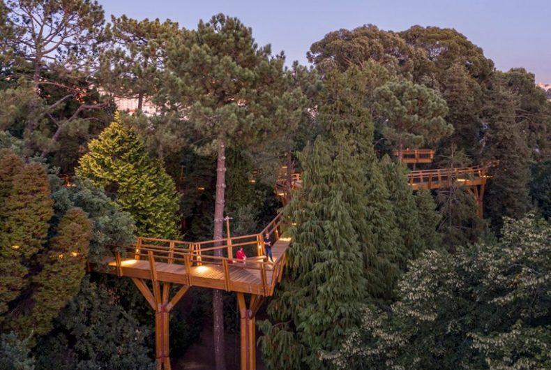 Canopy Walkway, il ponte sospeso nel Parco di Serralves