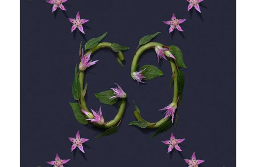 """Natura Patterns"", i motivi floreali di Raku Inoue"