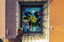 """Blooming Playground"", l'opera di Tellas a Torino"