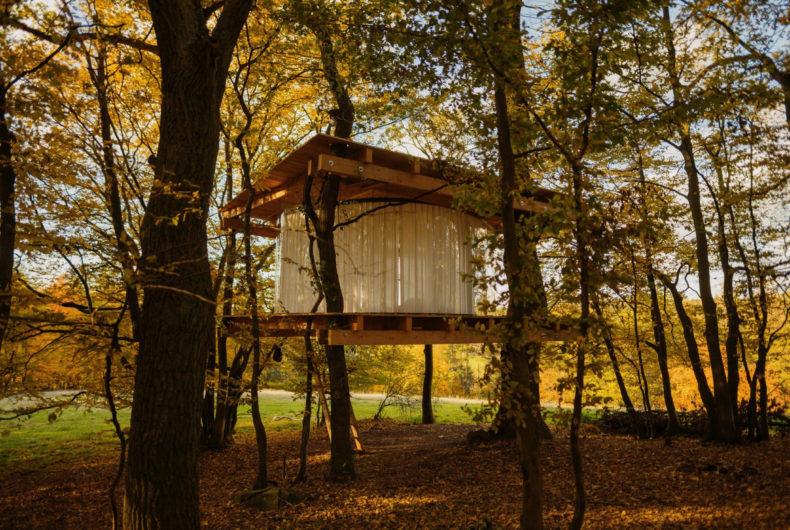 Una casa trasparente nascosta tra gli alberi