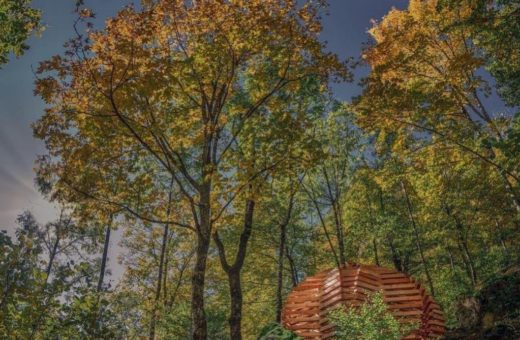 """""""Ispace"""", the pavilions hidden in the forest of Davide Macullo"""