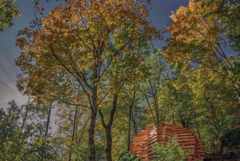 """""""Ispace"""", i padiglioni nascosti nella foresta di Davide Macullo"""