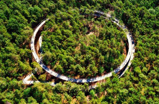 La pista ciclabile circolare immersa tra le foreste del Belgio