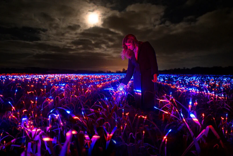 """GROW"", the light installation by Daan Roosegaarde"