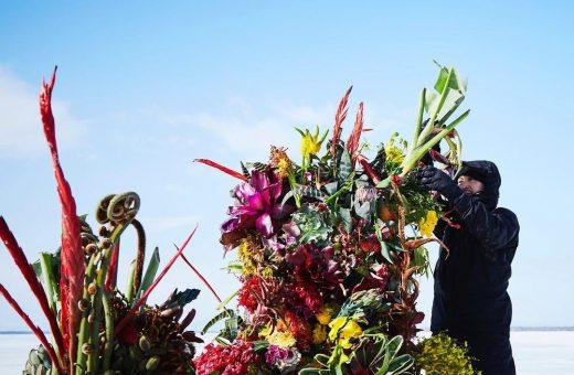 "I ""Frozen Flowers"" dell'artista giapponese Makoto Azuma"