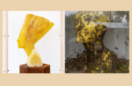 """""""Made by bees"""", the sculptures of Tomáš Libertíny"""