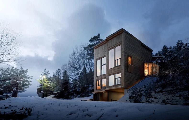 """""""Zieglers Nest"""", l'ultimo progetto di Rever & Drage architects"""