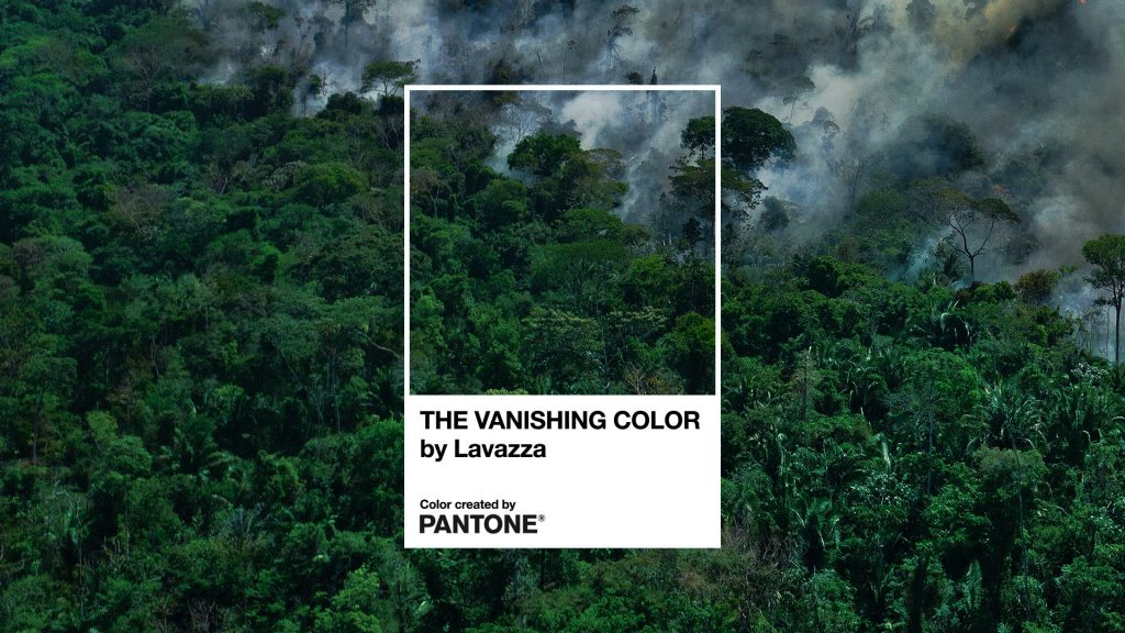 The Vanishing Color