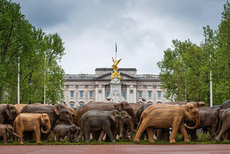 Centinaia di sculture di elefanti hanno invaso Londra