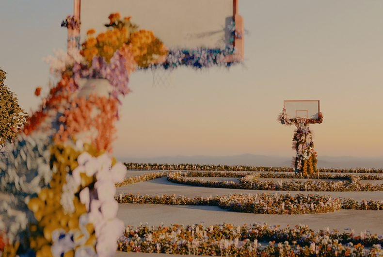 Shane Griffin covers the world with flowers